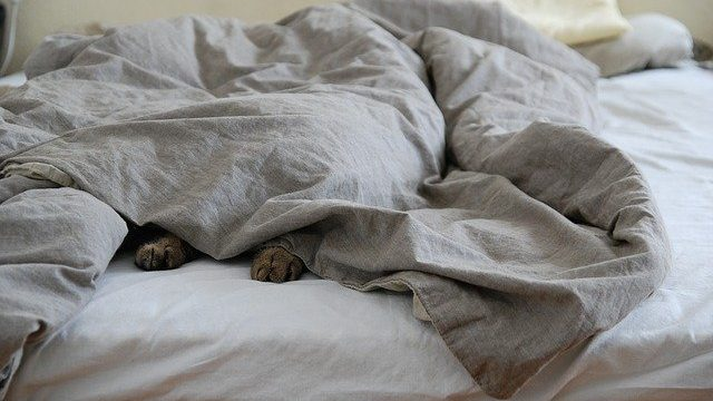 Are you sleeping with too many blankets?