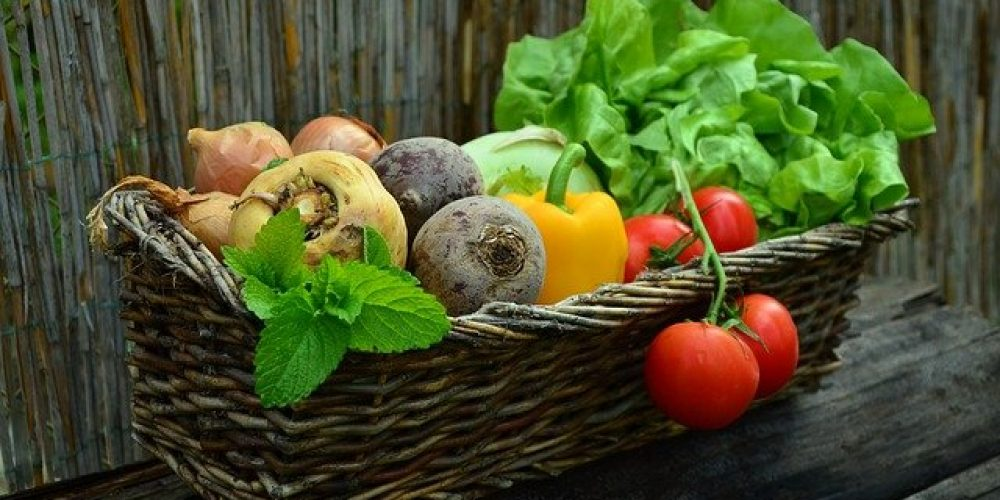 What you eat can impact your TMD